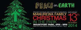 Manurewa family Christmas in the Park