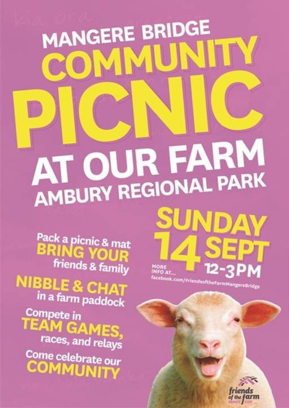 Mangere Bridge Community Picnic